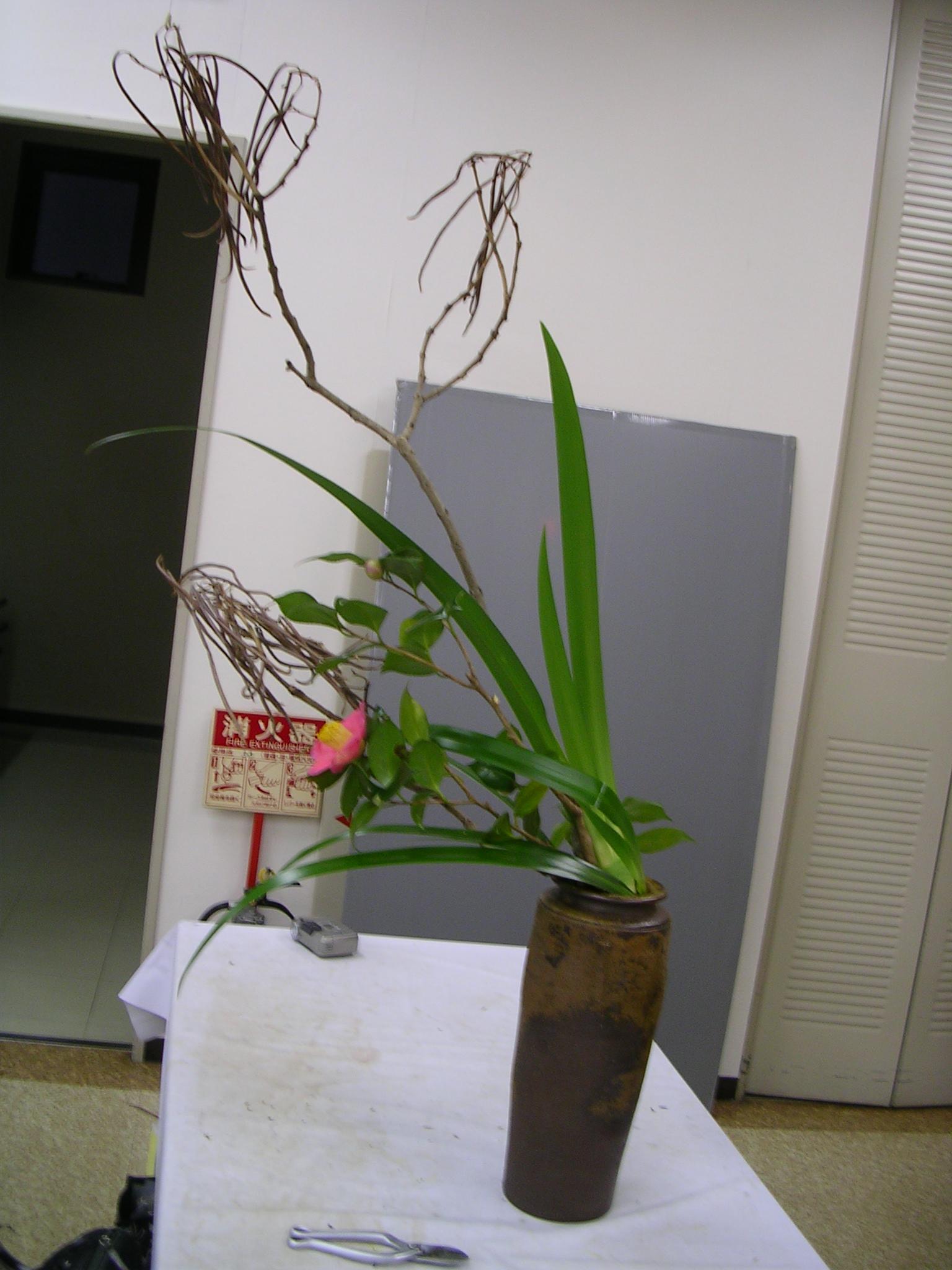 DSCN7876.JPG
