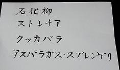 03-1-b-k.jpg