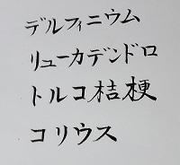 03-2-b-k.jpg