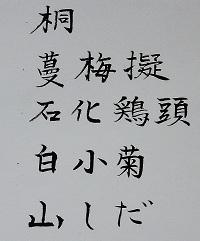 03-3-b-k.jpg