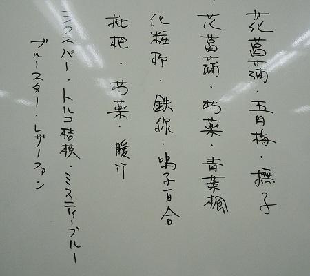0513a-2.jpg