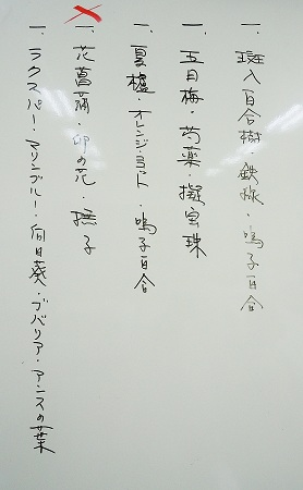 0520b-1.jpg