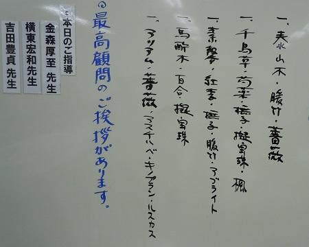 0531b-2.jpg