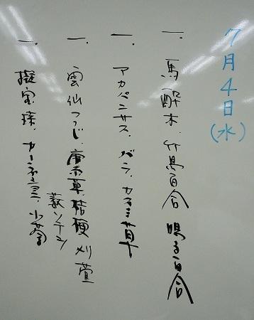 0709a-2.jpg
