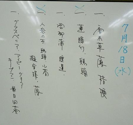 0722a-2.jpg