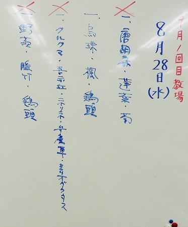 0830b-2.jpg