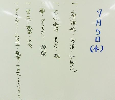 0909a-1.jpg