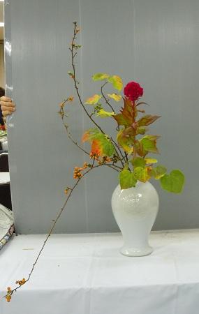 1003-3.jpg