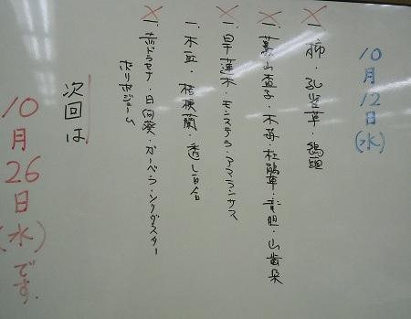 1021-2.jpg
