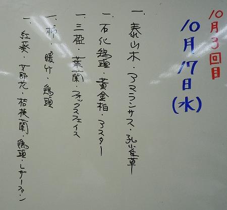 1101a-2.jpg
