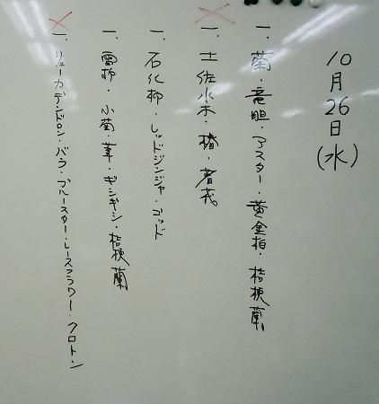 1102-1.jpg