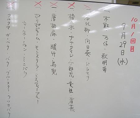 DSCN4111no6.jpg