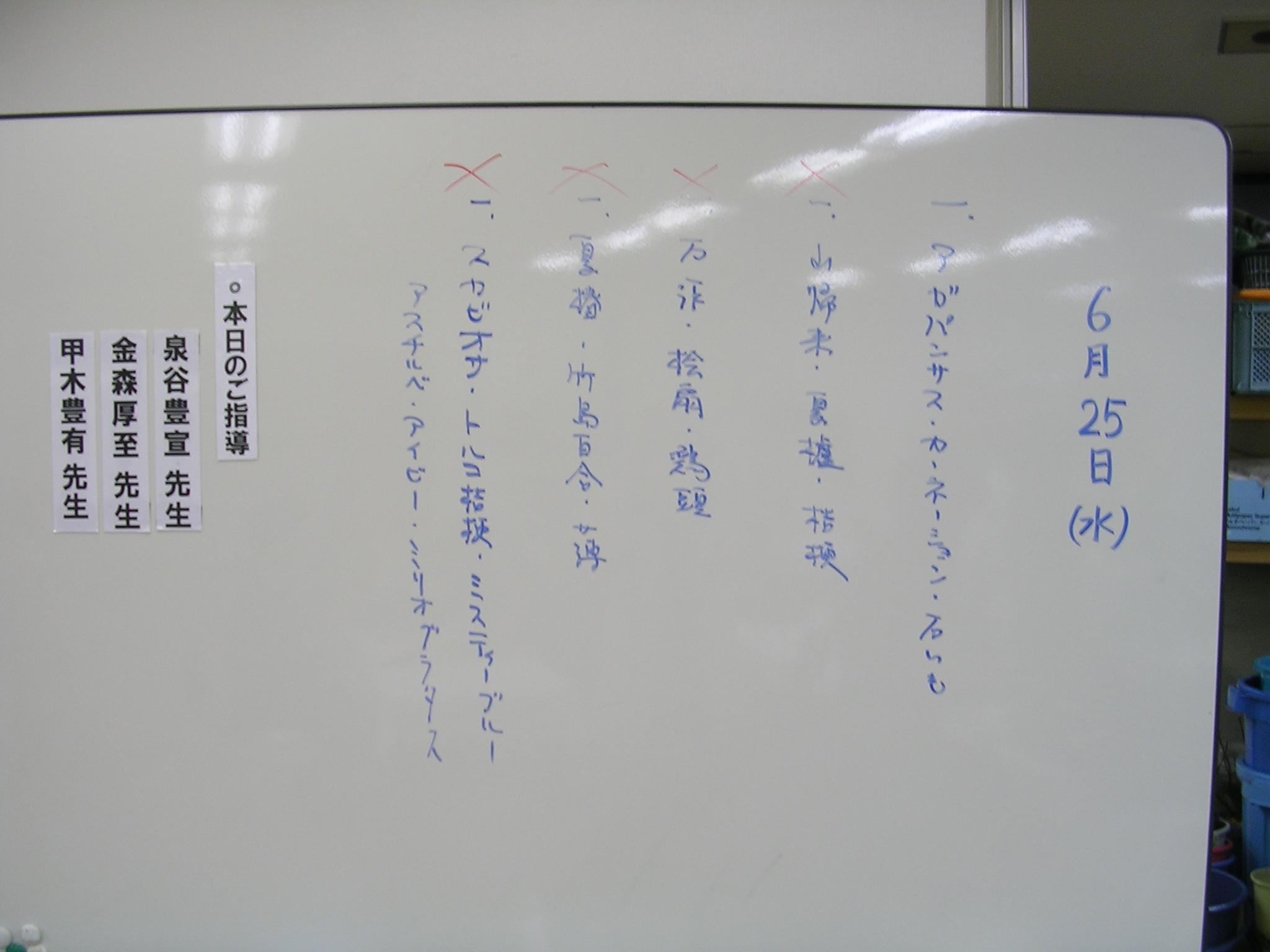 DSCN6214.JPG